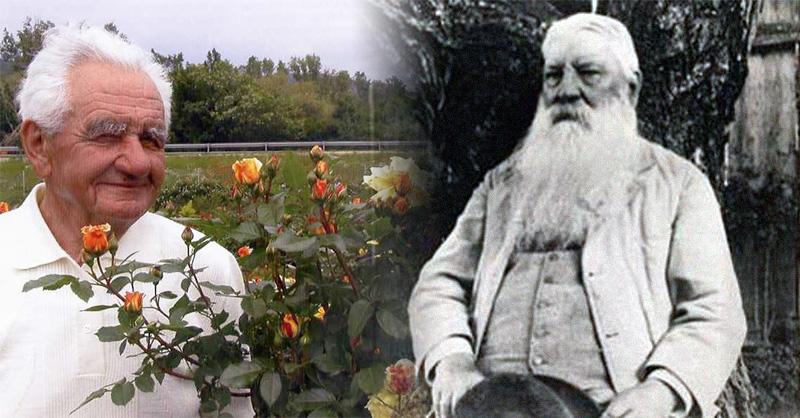 Gergely Márk und Rudolf Geschwind
